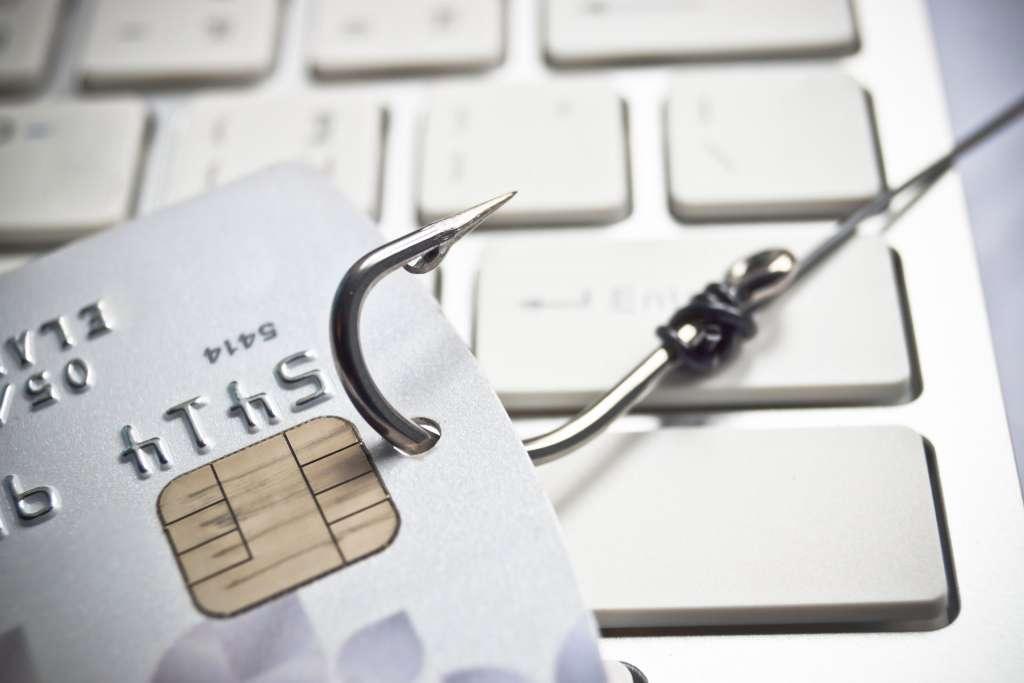 Webgalamb sérülékenység – weboldalak veszélyben